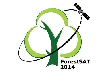 LOGO_forestSAT_4_5 (1)